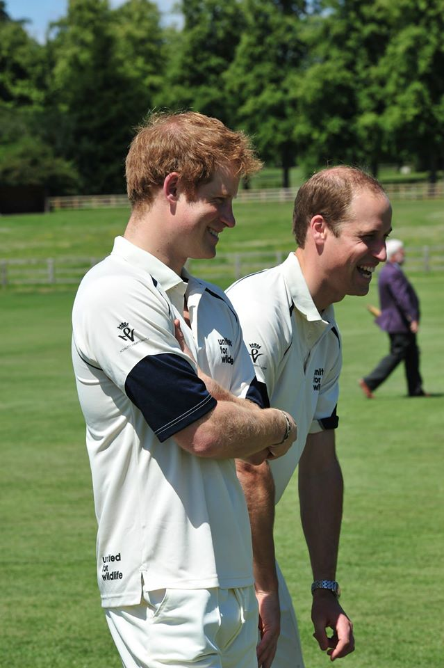 Will and Harry cricket