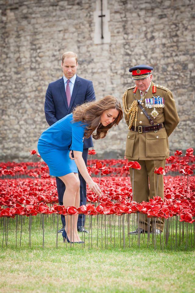 Kate planting a poppy