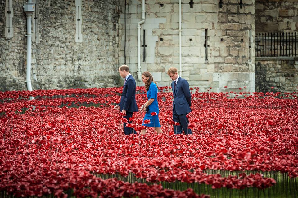 Will Kate and Harry Tower of London poppy installation