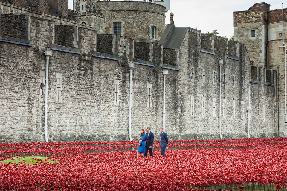 Will Kate and Harry Tower of London poppy