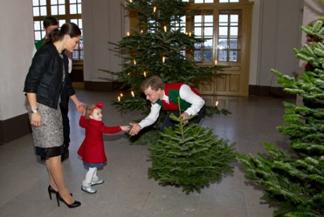 Crown Princess Victoria and Princess Estelle receive Christmas trees 2013