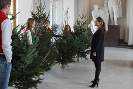 Crown Princess Victoria receives Christmas trees 2011