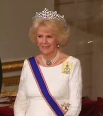 Camilla at State Banquet for Mexico
