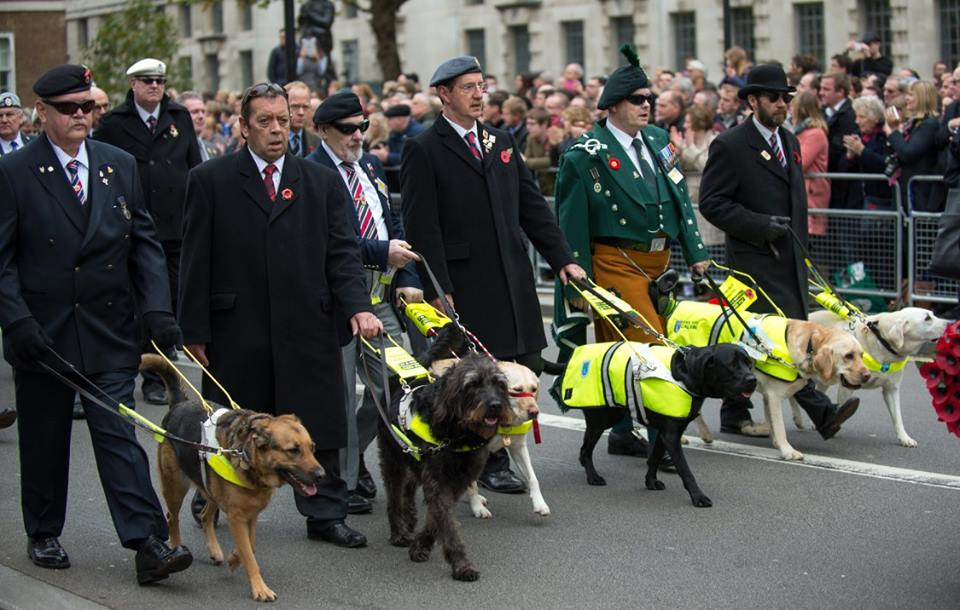 Blind veterans and their guide dogs