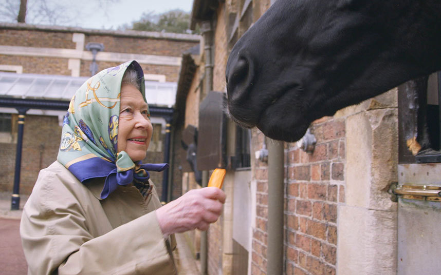 Queen with horses Our Queen at 90