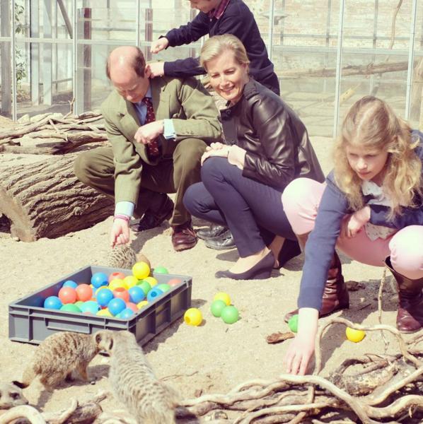 Wessex family feeding meerkats 5