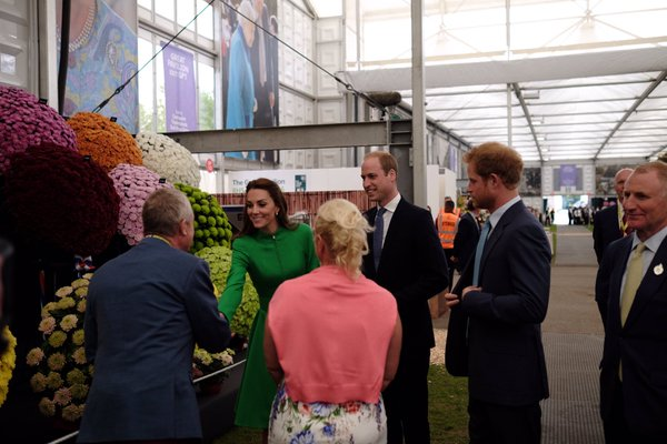 Kate, William, Harry at chrysanthemum Chelsea Flower Show garden