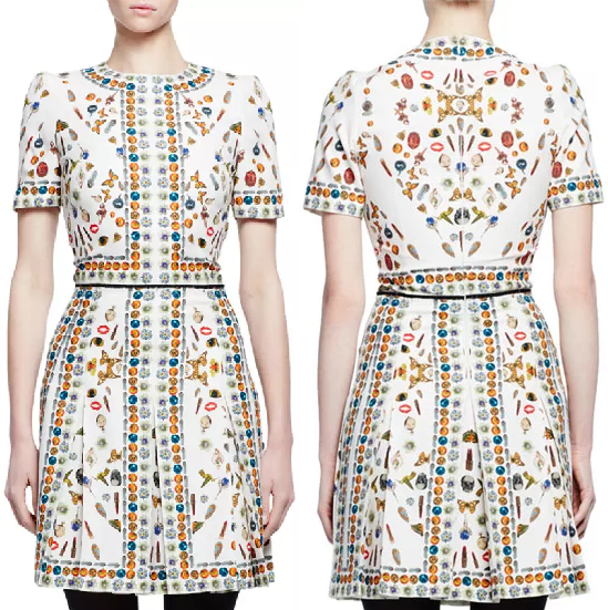 Alenxander McQueen Obsession-Print Dress