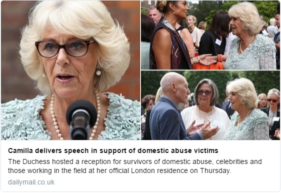 Camilla domestic violence reception