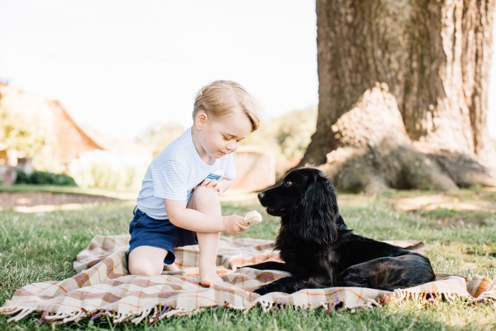 Prince George's 3rd birthday photo 4