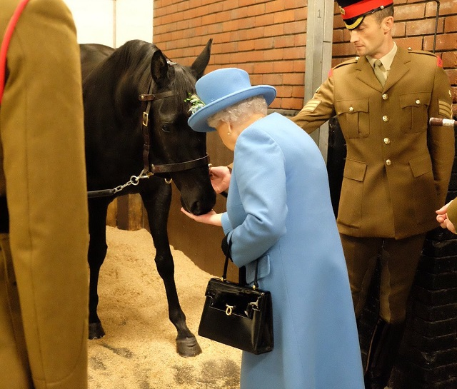 Queen Elizabeth II feeds horse Oct 2017 s